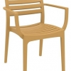Danni Indoor or Outdoor Chair with Arms
