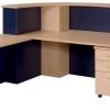 Melina Reception Desk