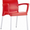 Raneri Indoor or Outdoor Chair with Arms