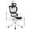 Bodyline Chair