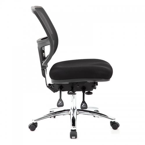 Parisi Task Chair