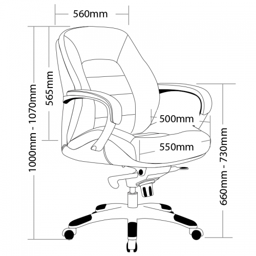 Baxter Leather Medium Back Executive Chair